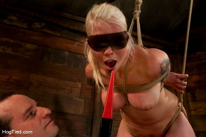 Photo number 14 from FEAR:  The trial & tribulations of Lorelei Lee shot for Hogtied on Kink.com. Featuring Lorelei Lee in hardcore BDSM & Fetish porn.
