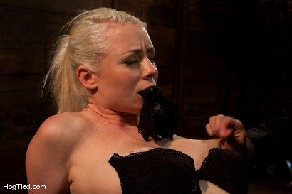 Photo number 3 from FEAR:  The trial & tribulations of Lorelei Lee shot for Hogtied on Kink.com. Featuring Lorelei Lee in hardcore BDSM & Fetish porn.