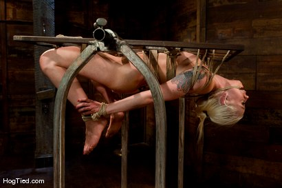 Photo number 8 from FEAR:  The trial & tribulations of Lorelei Lee shot for Hogtied on Kink.com. Featuring Lorelei Lee in hardcore BDSM & Fetish porn.