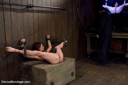 Photo number 5 from Amber Rayne<br>Anal Violation shot for Device Bondage on Kink.com. Featuring Amber Rayne in hardcore BDSM & Fetish porn.