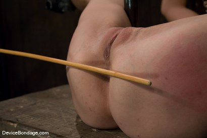 Photo number 7 from Amber Rayne<br>Anal Violation shot for Device Bondage on Kink.com. Featuring Amber Rayne in hardcore BDSM & Fetish porn.