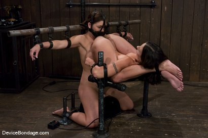 Photo number 1 from Claire Dames and Wenona<br>There is something you don't see everyday shot for Device Bondage on Kink.com. Featuring Wenona and Claire Dames in hardcore BDSM & Fetish porn.