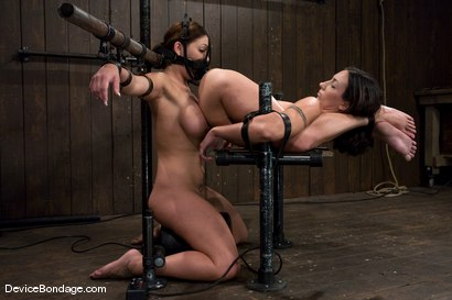 Photo number 6 from Claire Dames and Wenona<br>There is something you don't see everyday shot for Device Bondage on Kink.com. Featuring Wenona and Claire Dames in hardcore BDSM & Fetish porn.