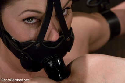 Photo number 5 from Claire Dames and Wenona<br>There is something you don't see everyday shot for Device Bondage on Kink.com. Featuring Wenona and Claire Dames in hardcore BDSM & Fetish porn.