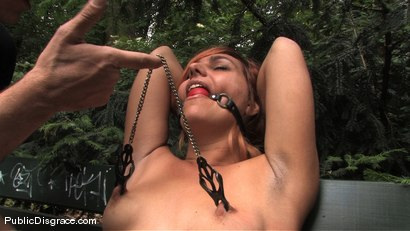 Photo number 3 from Flexible redhead is bound and stripped naked in public shot for Public Disgrace on Kink.com. Featuring Steve Holmes and Molly in hardcore BDSM & Fetish porn.