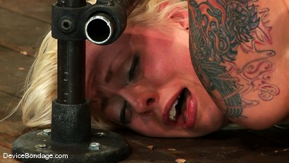 Photo number 4 from Jade Indica, Lorelei Lee and Sexy Jade <br>Part 4 of 4 of the June Live Feed shot for Device Bondage on Kink.com. Featuring Sexy Jade, Lorelei Lee and Miss Jade Indica in hardcore BDSM & Fetish porn.