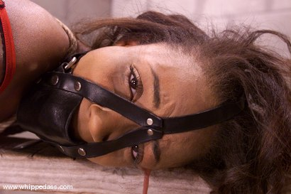 Photo number 14 from Sinnamon Love and Kym Wilde shot for Whipped Ass on Kink.com. Featuring Sinnamon Love and Kym Wilde in hardcore BDSM & Fetish porn.