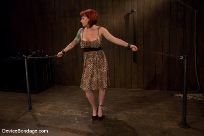 Photo number 1 from Kylie Ireland  Porn Legend suffering like everyone else. shot for Device Bondage on Kink.com. Featuring Kylie Ireland in hardcore BDSM & Fetish porn.