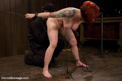 Photo number 8 from Kylie Ireland  Porn Legend suffering like everyone else. shot for Device Bondage on Kink.com. Featuring Kylie Ireland in hardcore BDSM & Fetish porn.