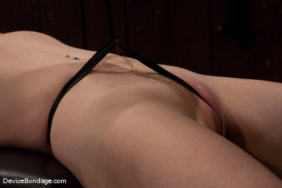 Photo number 8 from Kylie Ireland<br>Spread and abused. shot for Device Bondage on Kink.com. Featuring Kylie Ireland in hardcore BDSM & Fetish porn.