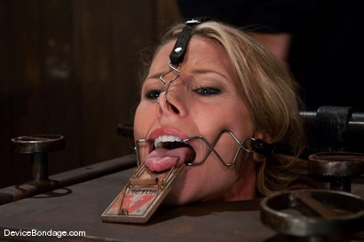 Photo number 5 from Ariel X<br>BEAUTIFIED shot for Device Bondage on Kink.com. Featuring Ariel X in hardcore BDSM & Fetish porn.