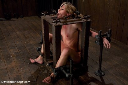 Photo number 10 from Ariel X<br>BEAUTIFIED shot for Device Bondage on Kink.com. Featuring Ariel X in hardcore BDSM & Fetish porn.