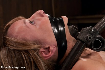 Photo number 5 from Jessie Cox<br> From kitten cute, to fucked up in seconds. shot for Device Bondage on Kink.com. Featuring Jessie Cox in hardcore BDSM & Fetish porn.