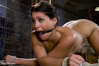 Photo number 2 from Jade Indica fucks her own ass in suspension! shot for Hogtied on Kink.com. Featuring Miss Jade Indica in hardcore BDSM & Fetish porn.