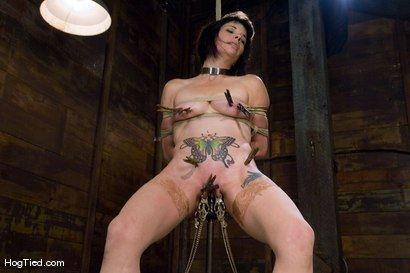 Photo number 7 from Submission to pain..... Cherries & Felony  shot for Hogtied on Kink.com. Featuring Felony and Cherries Jubalie in hardcore BDSM & Fetish porn.