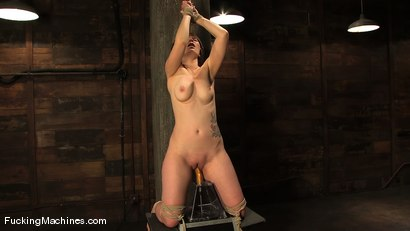 Photo number 13 from AMATEUR GIRL FRIDAY - CLAUDIA LeNOIR  shot for Fucking Machines on Kink.com. Featuring Claudia LeNoir in hardcore BDSM & Fetish porn.
