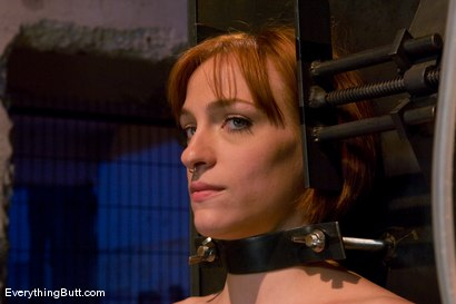 Photo number 3 from Anal Audition: Hot firey redhead doused with a gallon enema! shot for Everything Butt on Kink.com. Featuring Renee Broadway in hardcore BDSM & Fetish porn.