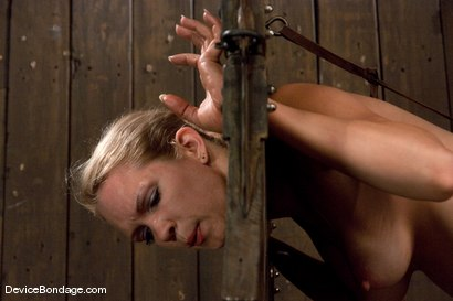 Photo number 14 from Rain Degrey<br> More Pain shot for Device Bondage on Kink.com. Featuring Rain DeGrey in hardcore BDSM & Fetish porn.