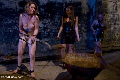 Photo number 1 from Harmony Rose, Aiden Starr <br> breaking in the new girl shot for Wired Pussy on Kink.com. Featuring Sarah Shevon, Harmony and Aiden Starr in hardcore BDSM & Fetish porn.