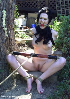Photo number 2 from Paige Richards shot for Hogtied on Kink.com. Featuring Paige Richards in hardcore BDSM & Fetish porn.