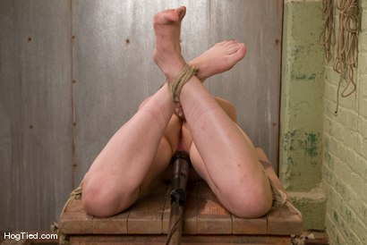 Photo number 7 from Fresh from the Amateur Casting Couch, Claudia LeNoir shot for Hogtied on Kink.com. Featuring Claudia LeNoir in hardcore BDSM & Fetish porn.