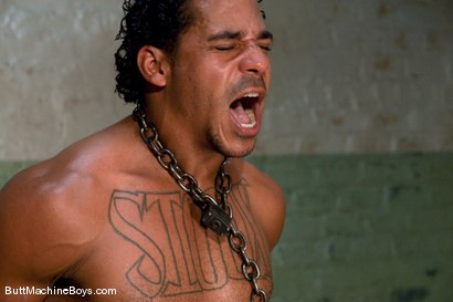 Photo number 10 from Straight Stud Lobo shot for Butt Machine Boys on Kink.com. Featuring Lobo in hardcore BDSM & Fetish porn.