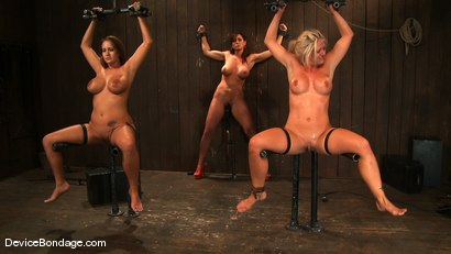 Photo number 3 from Trina Michaels, Holly Heart and Christina Carter<br> Part 4 of 4 of the August Live Feed shot for Device Bondage on Kink.com. Featuring Christina Carter, Trina Michaels and Holly Heart in hardcore BDSM & Fetish porn.