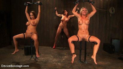 Photo number 4 from Trina Michaels, Holly Heart and Christina Carter<br> Part 4 of 4 of the August Live Feed shot for Device Bondage on Kink.com. Featuring Christina Carter, Trina Michaels and Holly Heart in hardcore BDSM & Fetish porn.