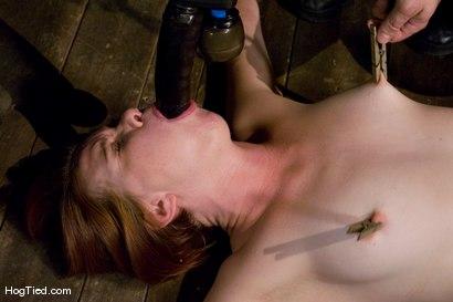 Photo number 7 from Denial of Service Attack: Lilla Katt NOT allowed to orgasm shot for Hogtied on Kink.com. Featuring Lilla Katt in hardcore BDSM & Fetish porn.