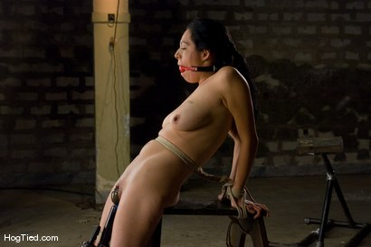 Photo number 9 from Amateur Casting Couch: Jessica is a true amateur tied for the first time shot for Hogtied on Kink.com. Featuring Jessica in hardcore BDSM & Fetish porn.