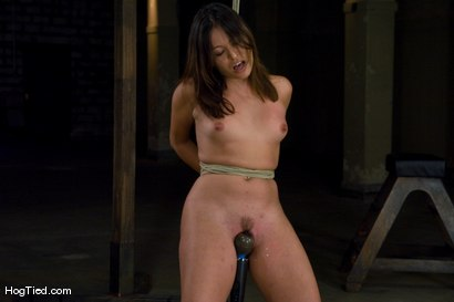 Photo number 8 from Amateur Casting Couch: Thea Marie... stripper/porn star, new bondage slut shot for Hogtied on Kink.com. Featuring Thea Marie in hardcore BDSM & Fetish porn.