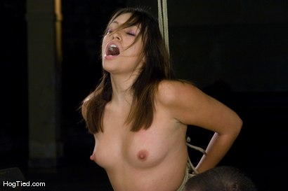 Photo number 10 from Amateur Casting Couch: Thea Marie... stripper/porn star, new bondage slut shot for Hogtied on Kink.com. Featuring Thea Marie in hardcore BDSM & Fetish porn.