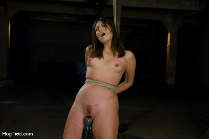 Photo number 14 from Amateur Casting Couch: Thea Marie... stripper/porn star, new bondage slut shot for Hogtied on Kink.com. Featuring Thea Marie in hardcore BDSM & Fetish porn.