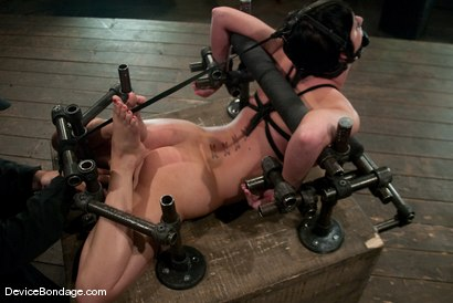 Photo number 11 from Cherry Torn<br> Hogtied and made to cum so much and so hard that it brings tears. shot for Device Bondage on Kink.com. Featuring Cherry Torn in hardcore BDSM & Fetish porn.