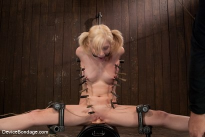Photo number 8 from Ally Ann<br> 19 year old, zippered, and made to cum until her brain melts! shot for Device Bondage on Kink.com. Featuring Ally Ann in hardcore BDSM & Fetish porn.