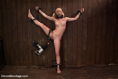Photo number 1 from Ally Ann<br> 19yr olds, and getting fucked by a machine. shot for Device Bondage on Kink.com. Featuring Ally Ann in hardcore BDSM & Fetish porn.