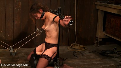 Photo number 11 from Amber Rayne, Rain DeGrey, and Ariel X   Part 3 of 4 of the October Live show shot for Device Bondage on Kink.com. Featuring Amber Rayne, Ariel X and Rain DeGrey in hardcore BDSM & Fetish porn.