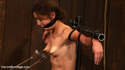 Photo number 7 from Amber Rayne, Rain DeGrey, and Ariel X<br> Part 3 of 4 of the October Live show shot for Device Bondage on Kink.com. Featuring Amber Rayne, Ariel X and Rain DeGrey in hardcore BDSM & Fetish porn.