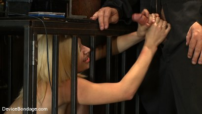 Photo number 1 from Ashley Jane, Ally Ann, and Princess Donna<br> Part 3 of 4 of the November Live show shot for Device Bondage on Kink.com. Featuring Princess Donna Dolore, Ally Ann and Ashley Jane in hardcore BDSM & Fetish porn.