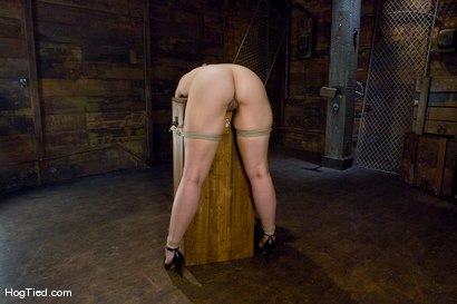 Photo number 6 from Kaydence is spread wide & fucked in the ass shot for Hogtied on Kink.com. Featuring Kaydence Katchings in hardcore BDSM & Fetish porn.