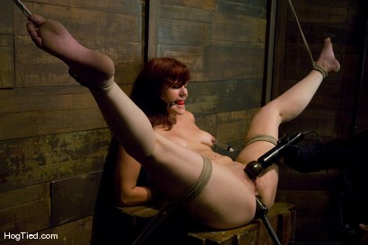 Photo number 11 from Kaydence is spread wide & fucked in the ass shot for Hogtied on Kink.com. Featuring Kaydence Katchings in hardcore BDSM & Fetish porn.