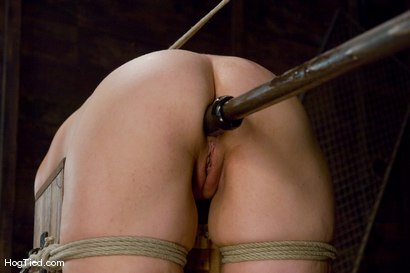 Photo number 9 from Kaydence is spread wide & fucked in the ass shot for Hogtied on Kink.com. Featuring Kaydence Katchings in hardcore BDSM & Fetish porn.