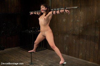 Photo number 6 from Thea Marie<br> Crucifucked shot for Device Bondage on Kink.com. Featuring Thea Marie in hardcore BDSM & Fetish porn.