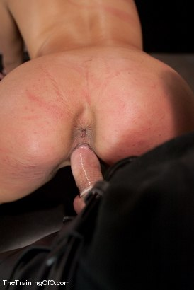 Photo number 14 from The Training of Jade Indica, Day One shot for The Training Of O on Kink.com. Featuring Miss Jade Indica and Maestro in hardcore BDSM & Fetish porn.