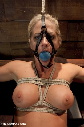 Photo number 11 from Holly Heart Submits shot for Whipped Ass on Kink.com. Featuring Maitresse Madeline Marlowe  and Holly Heart in hardcore BDSM & Fetish porn.