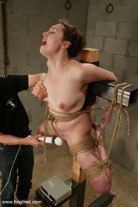 Photo number 14 from Hot Goth Girl Bound shot for Hogtied on Kink.com. Featuring Dolores Haze in hardcore BDSM & Fetish porn.