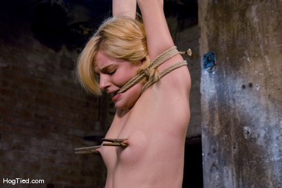 Photo number 2 from Ally Ann: Whining bitch takes what is given to her shot for Hogtied on Kink.com. Featuring Ally Ann in hardcore BDSM & Fetish porn.