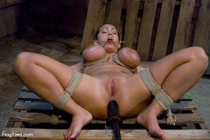 Photo number 7 from Tongue Tied & Tit Tormented Trina Michaels shot for Hogtied on Kink.com. Featuring Trina Michaels in hardcore BDSM & Fetish porn.