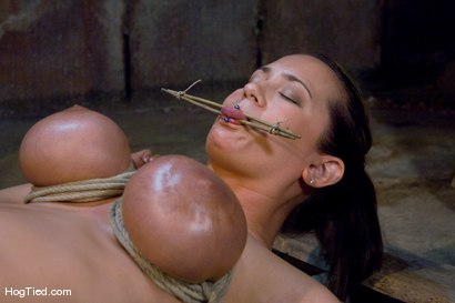 Photo number 8 from Tongue Tied & Tit Tormented Trina Michaels shot for Hogtied on Kink.com. Featuring Trina Michaels in hardcore BDSM & Fetish porn.