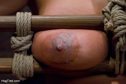 Photo number 10 from Tongue Tied & Tit Tormented Trina Michaels shot for Hogtied on Kink.com. Featuring Trina Michaels in hardcore BDSM & Fetish porn.